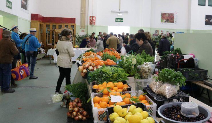 Mercado Municipal de Tomar continua aberto